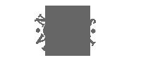 norgesvindu-logo-sh-200